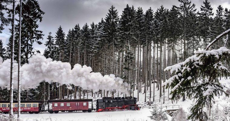 5 Gründe, in den Harz zu fahren