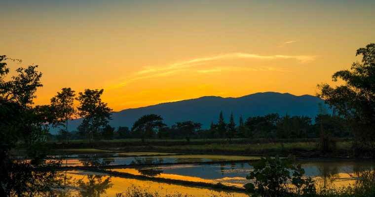 Chiang Mai – Die Trendstadt im Norden Thailands