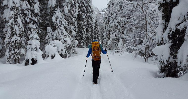 Entfliehe dem Alltag mit einer Wandertour im Winter